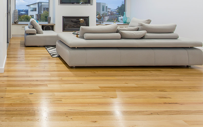Blackbutt Timber Flooring in Pivot Home Geelong