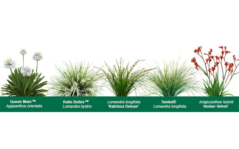 BAL Ratings - Fire Retardant Plants